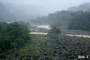 KB15-10: Regenwald Costa Rica, Abbildung 2
