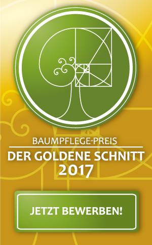 goldener-schnitt-2017