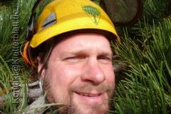 Work & Travel als Baumkletterer in Kanada