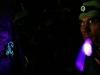 Abb. 13 - Fluoreszierende Skorpione