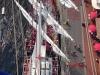 MBKS auf dem Segelschiff statt auf dem Baum 26