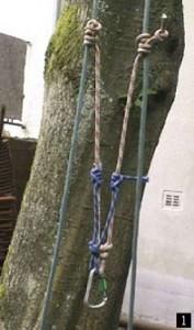 Tree Walking: Einbau Doppelseil