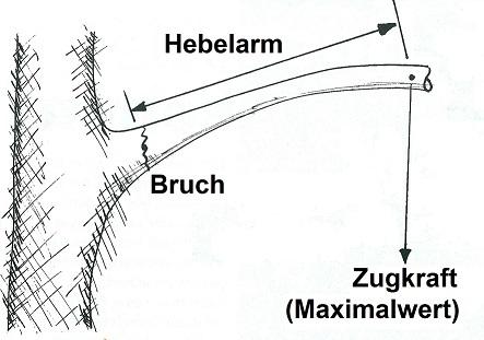Grafik Astbruch
