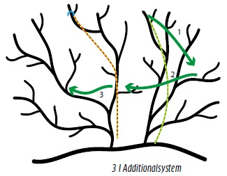 Zeichnung von Ästen mit Seilen, Richtungspfeilen und Wurfhaken